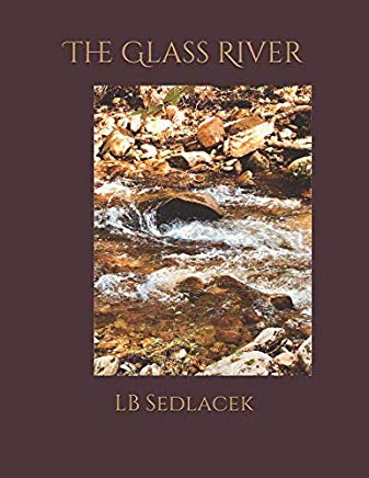 the glass river book cover